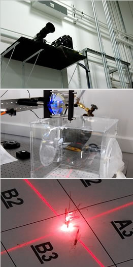 Laser Kills Mosquitoes Like Brin's Bee Zapper: Science ... Mosquito Laser